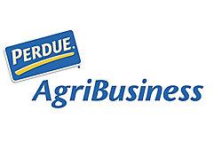 Purdue Logo Desktop