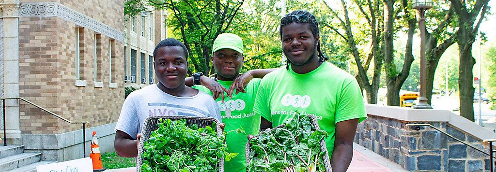 A Bronx School Garden Program: Serving Up Good Hydroponically