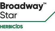 Broadway-Star-LV
