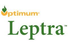 Leptra