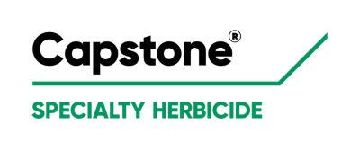 Capstone product logo