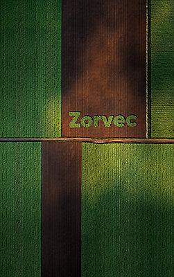 Corteva_Ann Zorvec