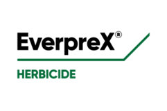 EverpreX logo