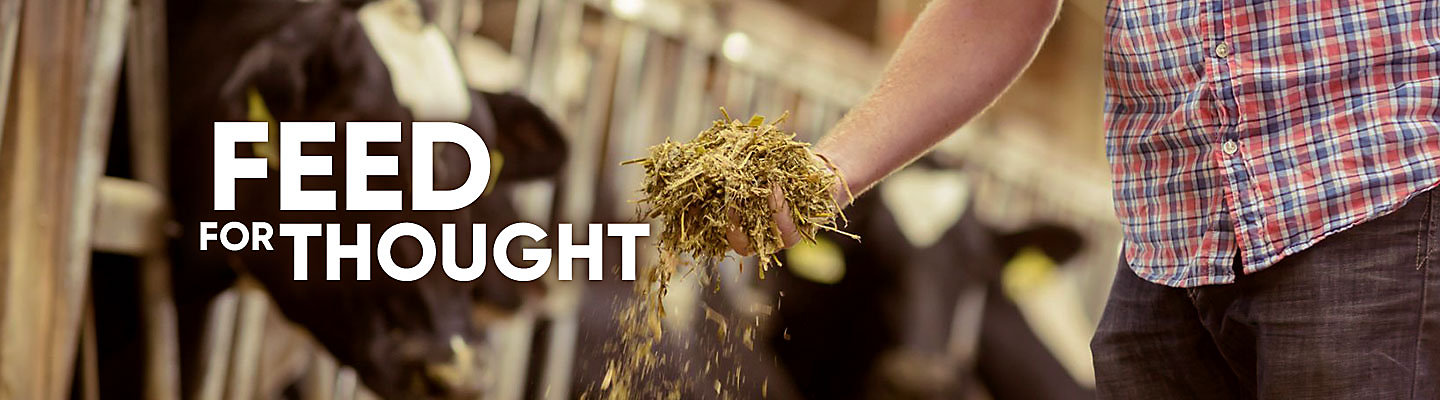 Feed for Thought - Forage Experts