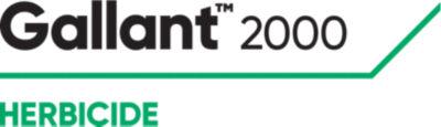 Gallant 2000 NLD Logo