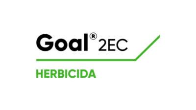 Goal 2EC
