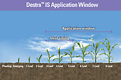 Destra Application Window