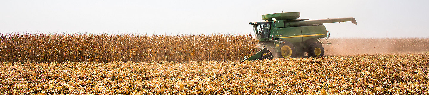 Image of corn field being harvested by John Deere combine.