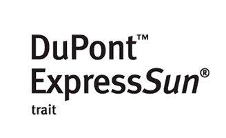 Logotipo Express Sun
