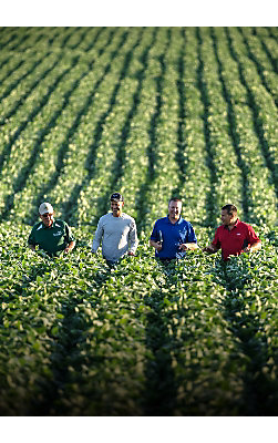 Four men walk through field