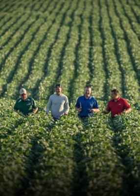 Four Men Walking In Field