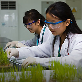 Two female technicians with plants