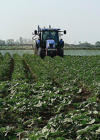 Tractor regando campo sembrado