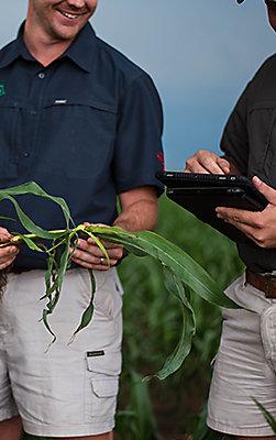 Pioneer Agronomy