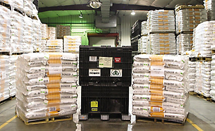 Pioneer corn supply in warehouse