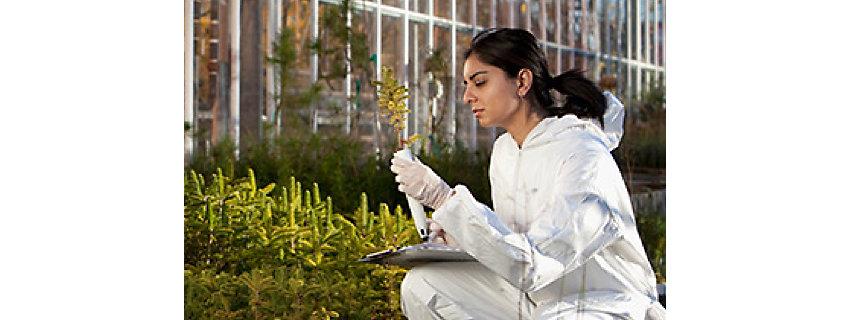 Жена учен проверява растение