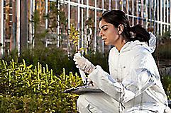 Девушка изучает ростки растения.