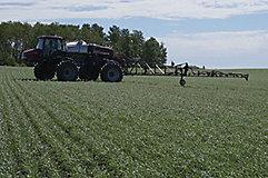 Side of sprayer in wheat field