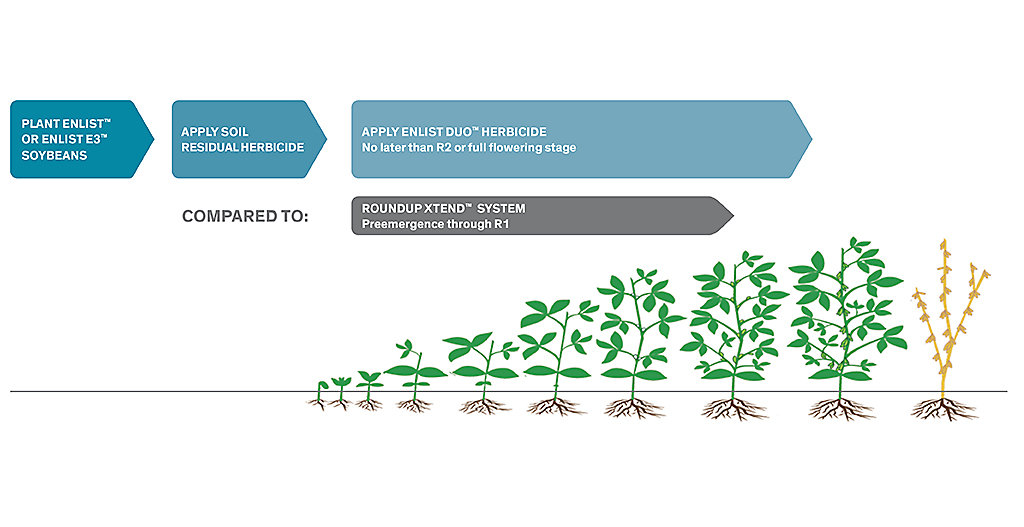 Soybean growth with Enlist Duo graphic