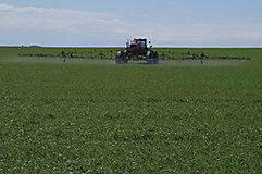 Sprayer in field