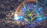 Imagen desktop de planta con miscelaneas