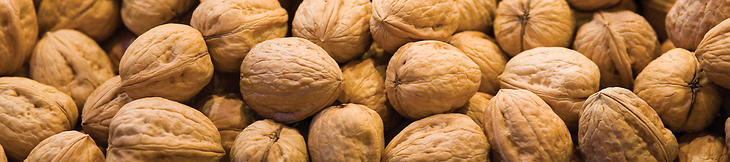 Image of walnuts in shell