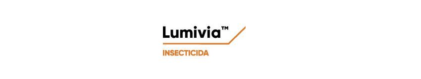 Logo Lumivia desktop