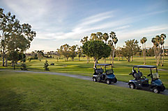 Image of golf carts on path