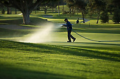 image of man spraying golf course