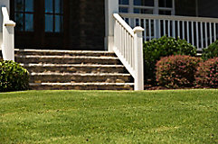 Image of steps and lawn in front of home