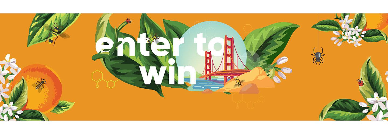 San Francisco Promotion Mobile