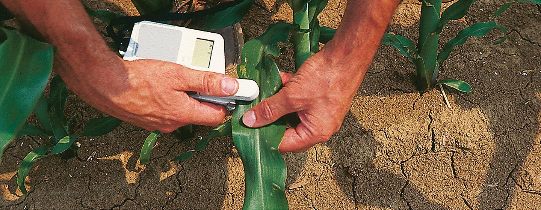 Servizi Agronomici