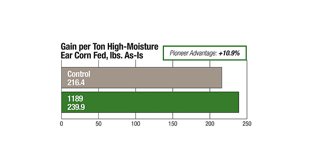 1189 Gain Per Ton High Moisture Ear Corn Chart