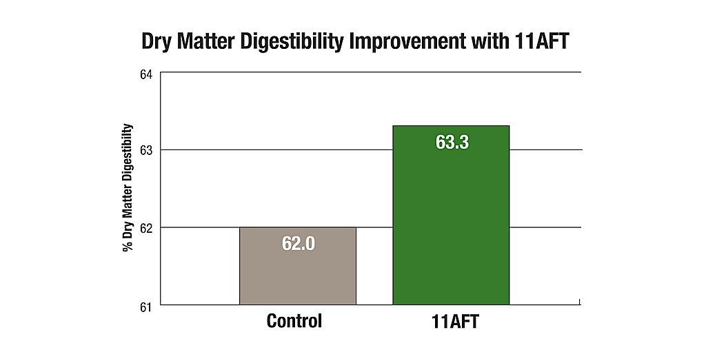 11AFT Dry Matter Digestibility Improvement Chart