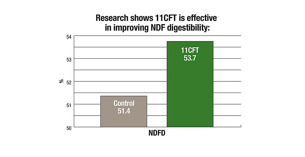 11CFT Improving NDF Digestibility Chart