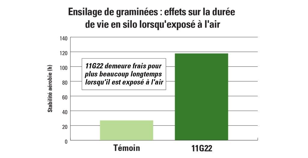 11G22 carte de l'effet de l'ensilage de graminées sur la durée de vie en silo