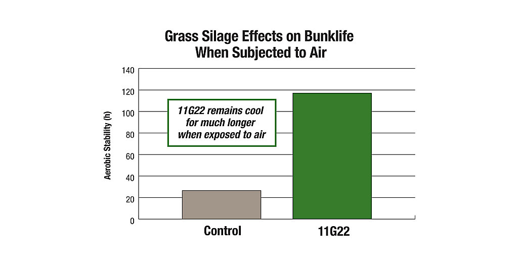 11G22 Grass Silage Effects on Bunklife Chart