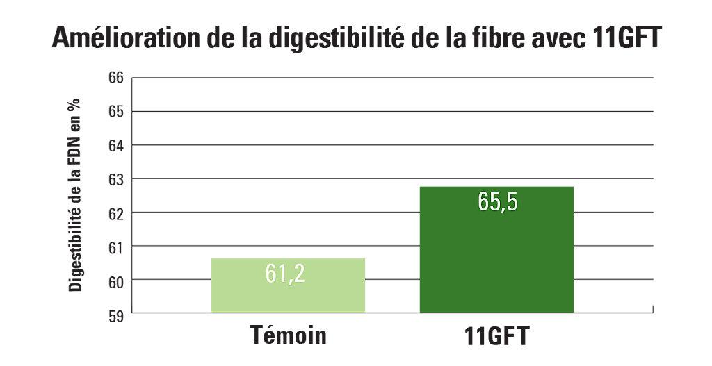 11GFT carte de l'amélioration de la digestibilité de la fibre