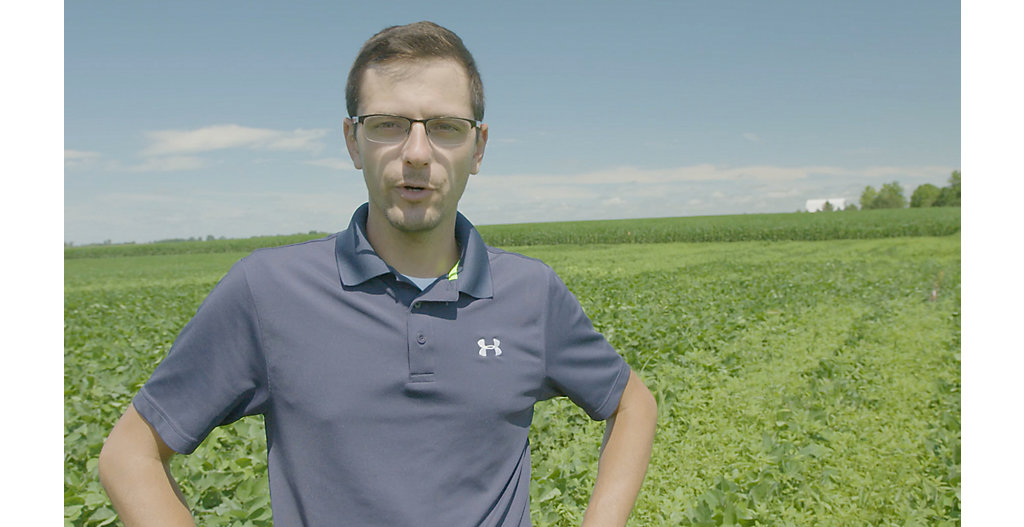 Video of Mike Meyer discussing weed control results from herbicide trials