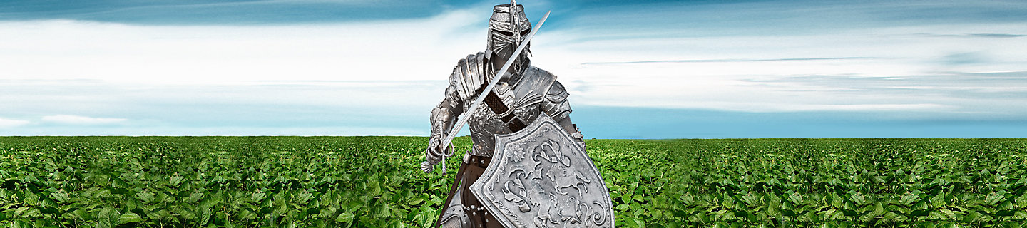 Knight standing in a field of soybeans