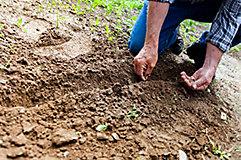 Persona cultivando sobre la tierra.
