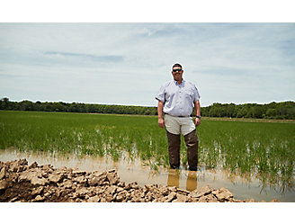 Kyle Colwell in rice field