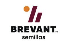 Imagen desktop del logo brevant