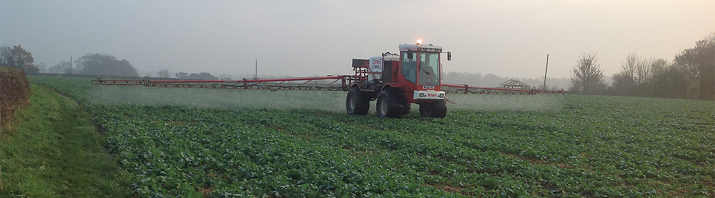 autumn herbicide oilseed rape
