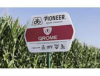 Pioneer® Brand Qrome® Products