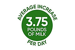 Average Increase per Day icon