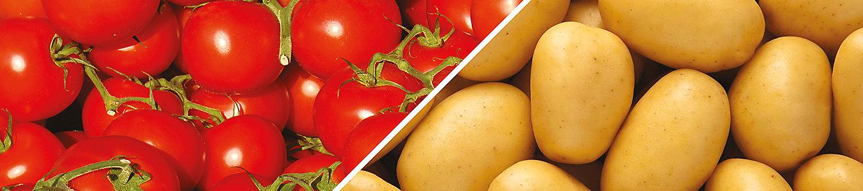 Pomodoro e Patata