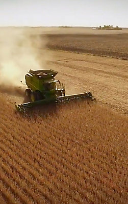 Helping Farmers Maximize Yield | Pioneer Seeds