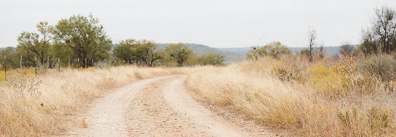 Dirt Road through pasture