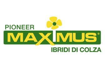 Logo Maximus